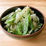 【野菜ひとつ】食べるねぎ塩だれ 長ねぎのナムル